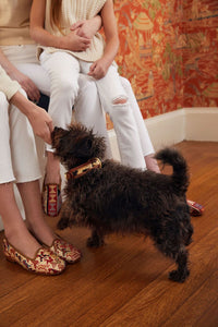 Bazaar - Sumak Kilim Dog Collar & Leash, Small