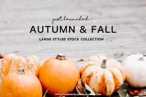 New Images | An Autumn Themed Collection