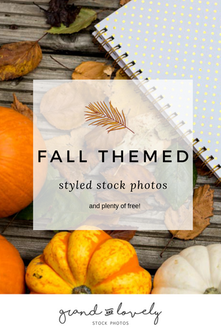fall styled stock images, free styled stock photos, autumn stock photos for bloggers, autumn, fall, free images, styled stock photography, free stock photos, fall images, free fall images, free autumn themed images, leaves, hedgehog, acorns, pumpkin, pumpkins, pictures of, photos of