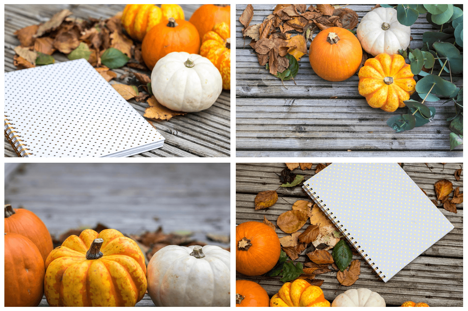 The AUTUMN COLLECTION bundle (80 seasonal styled stock photos) - Grand & Lovely Stock styled photography desktops lifestyle screens desktops stationary