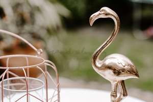Lifestyle | Gold Flamingo Garden Landscape | Single Photo - Grand & Lovely Stock styled photography desktops lifestyle screens desktops stationary