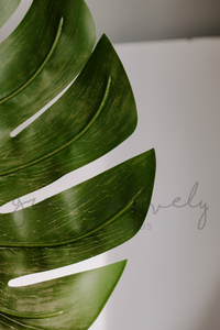 FREE Styled Stock Photo | Large Green Monstera Leaf, Single Photo - Grand & Lovely Stock styled photography desktops lifestyle screens desktops stationary