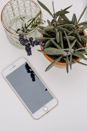 Iphone screen flatlay | white background nature  | Single Photo - Grand & Lovely Stock styled photography desktops lifestyle screens desktops stationary