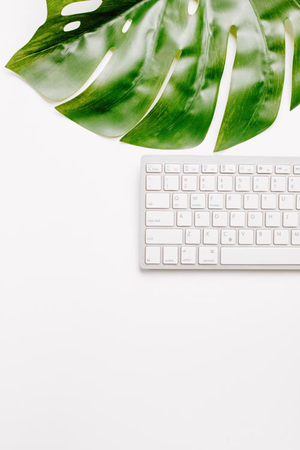 Styled Stock Photo I  White keyboard minimal monstera - Grand & Lovely Stock styled photography desktops lifestyle screens desktops stationary