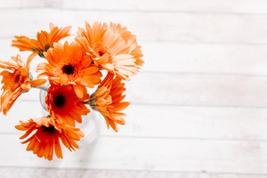 Styled Stock Photography I Autumn / Fall Collection - Minimal Orange Flowers - Grand & Lovely Stock styled photography desktops lifestyle screens desktops stationary