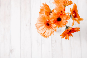 Styled Stock Photography I Autumn / Fall Collection - Orange Flowers Flatlay - Grand & Lovely Stock styled photography desktops lifestyle screens desktops stationary