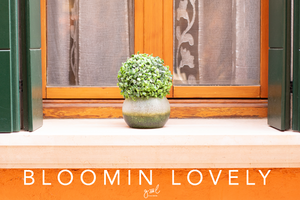 Premium Styled stock photography I Orange Lifestyle Image | Plant Windowsill | travel blog | social media - Grand & Lovely Stock styled photography desktops lifestyle screens desktops stationary