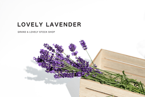 Styled Stock Photography | Spring Blog I Lavender in wooden slat box - Grand & Lovely Stock styled photography desktops lifestyle screens desktops stationary