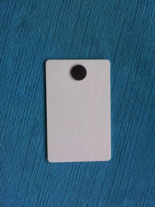 Princess Cruise Light Card® card key switch activator
