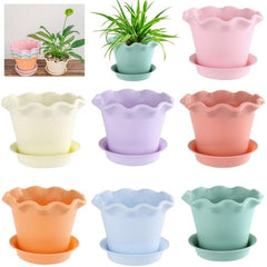 Colourful Resin Flower Pot Succulent Plant