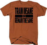 Train Insane Or Remain The Same Fitness Workout Lifting