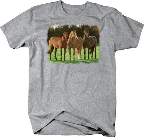 Brown Horses Standing Together in a Open Field Shirt Trees Grass