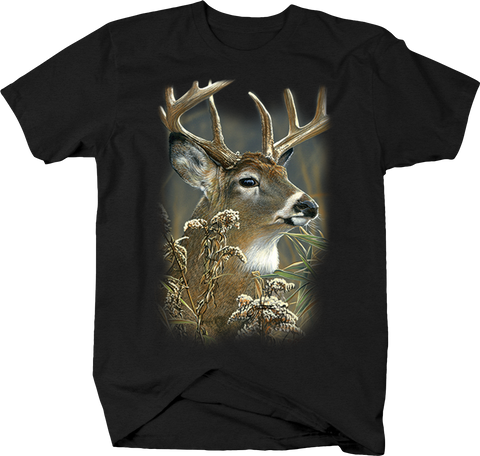 Big Buck Deer Looking Into Forest Deer Wildlife Nature Hunting