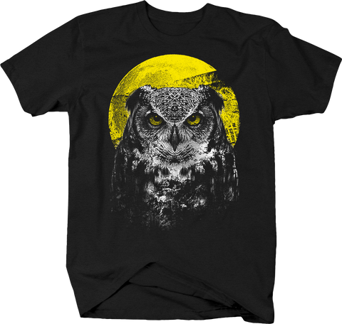 Owl Staring at you Moonlight Wildlife Nature Hunting Birds