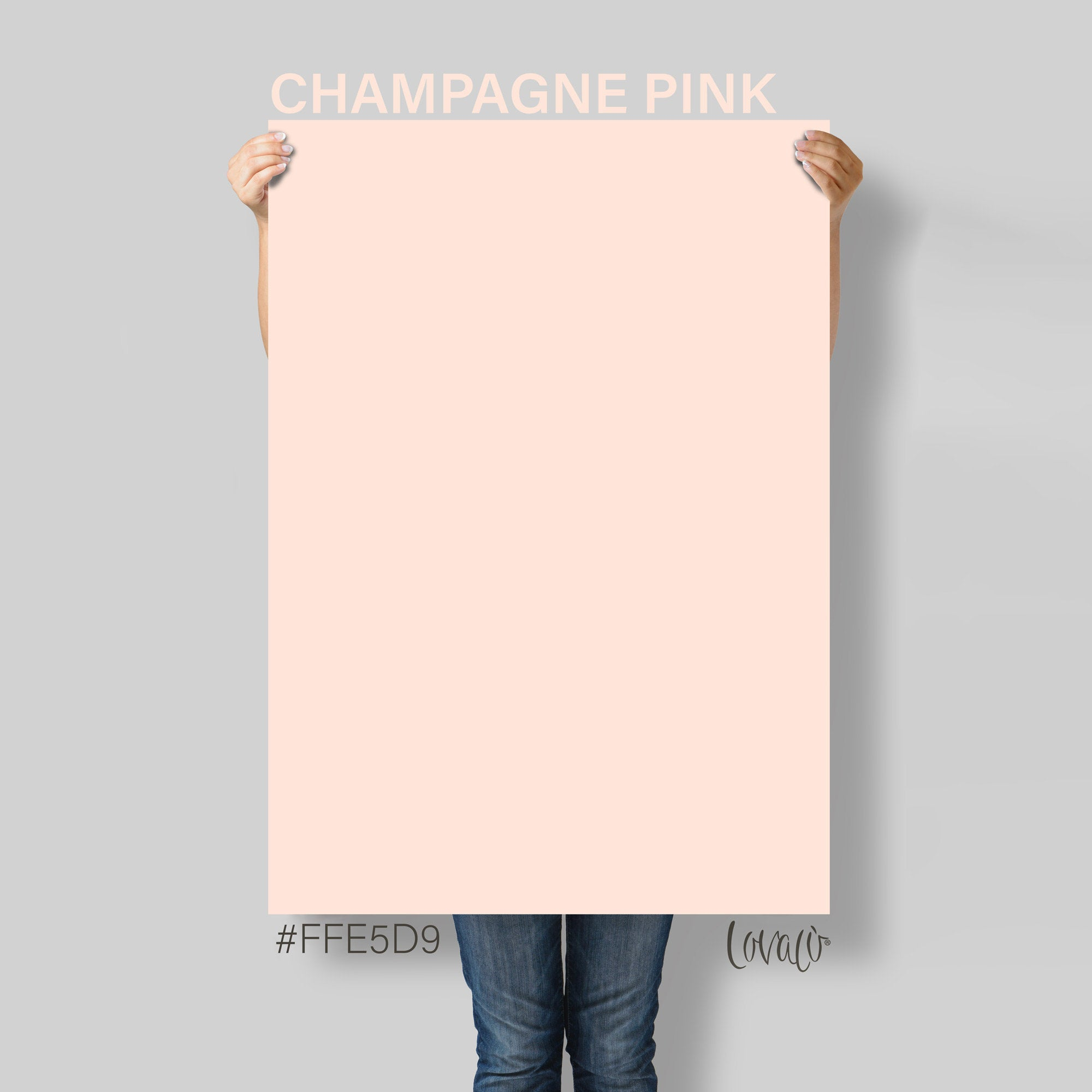 Pastel Pink Champagne solid color Photography Backdrop for Product, Instagram, Flat lay, Social, New born & Food Photography - Lov4003