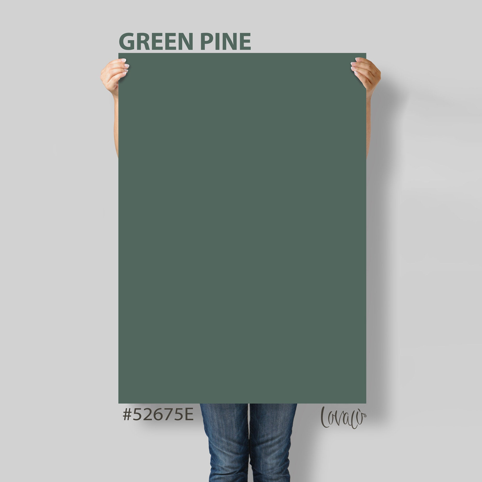 Green Pine solid color Photography Backdrop for Product, Instagram, Flat lay, Social, New born & Food Photography - Lov4021