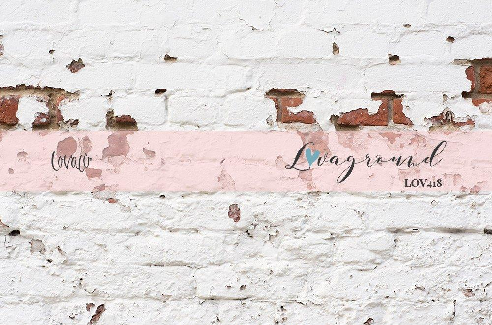 Photography backdrop Old vintage white Wall brick - Lov 418 - LovaluDesign
