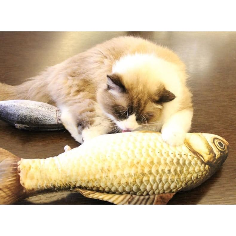 Stuffed Catnip Kicker Fish Toy - Pets