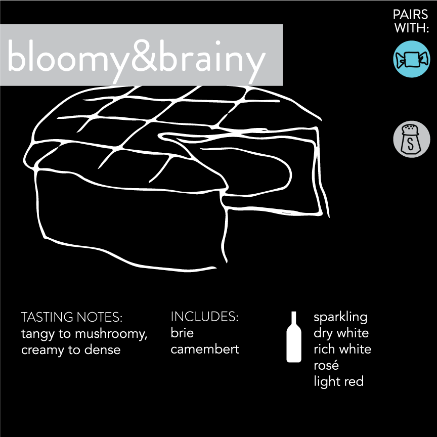 Bloomy and brainy infographic
