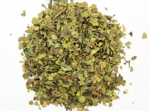 Emerald Coast Wild Harvest Yaupon Tea