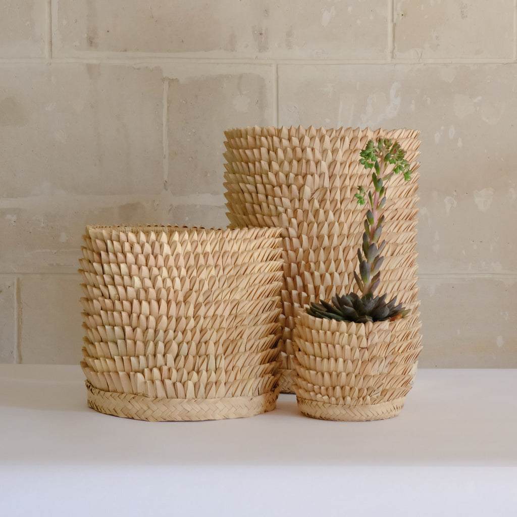 Porcupine Baskets