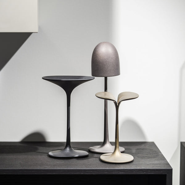 Mushrooms by Stefan Schoning | Gardeco