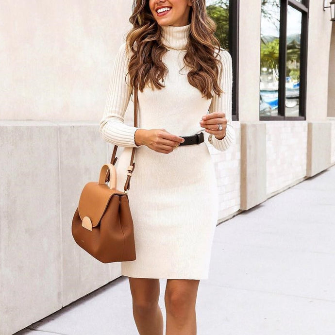 Elegant Turtleneck Slim Flit Bodycon Mini   Sweater Dress