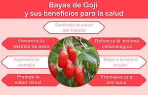 Bayas de Goji 100% Natural