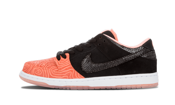 NIKE SB DUNK LOW FISH LADDER