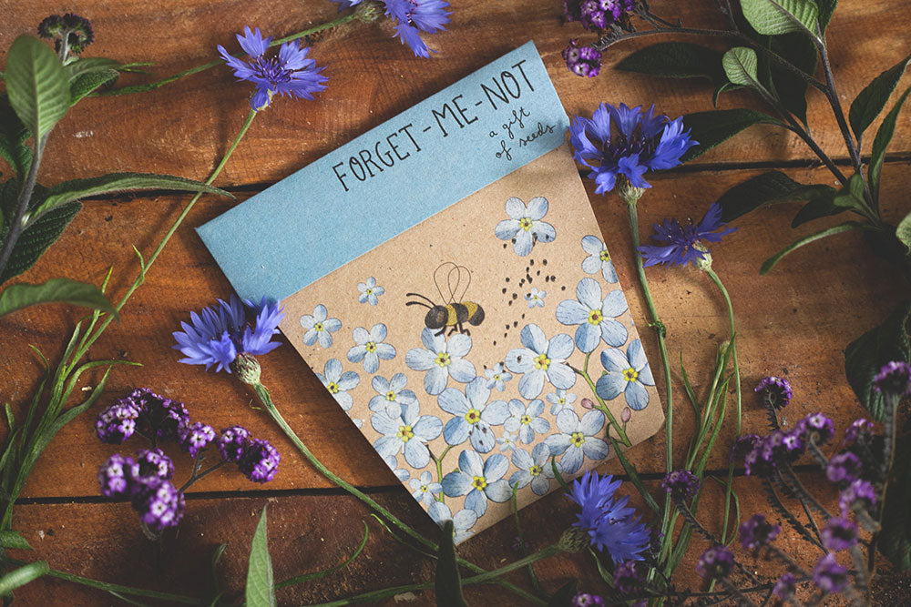 Gift Seeds - Forget Me Not