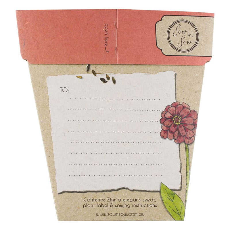Gift Seeds - Hooray Zinnia