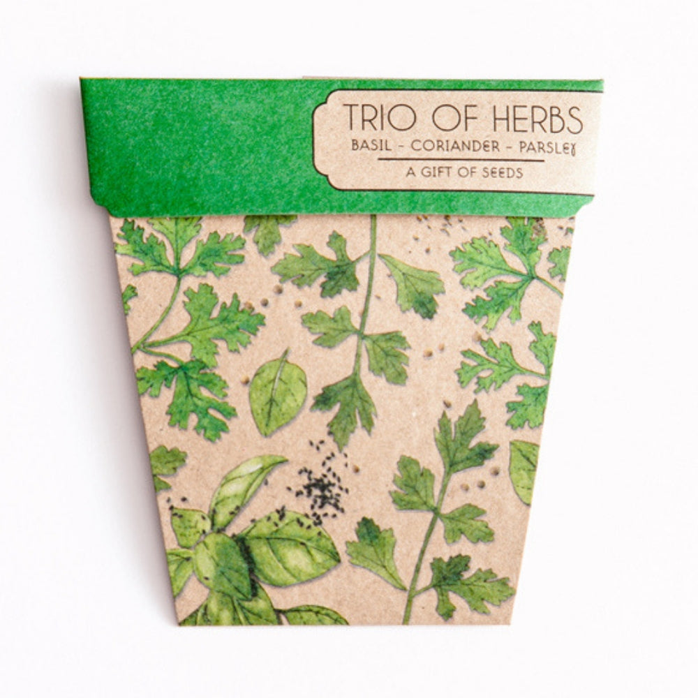 Gift Seeds - Trio of Herbs