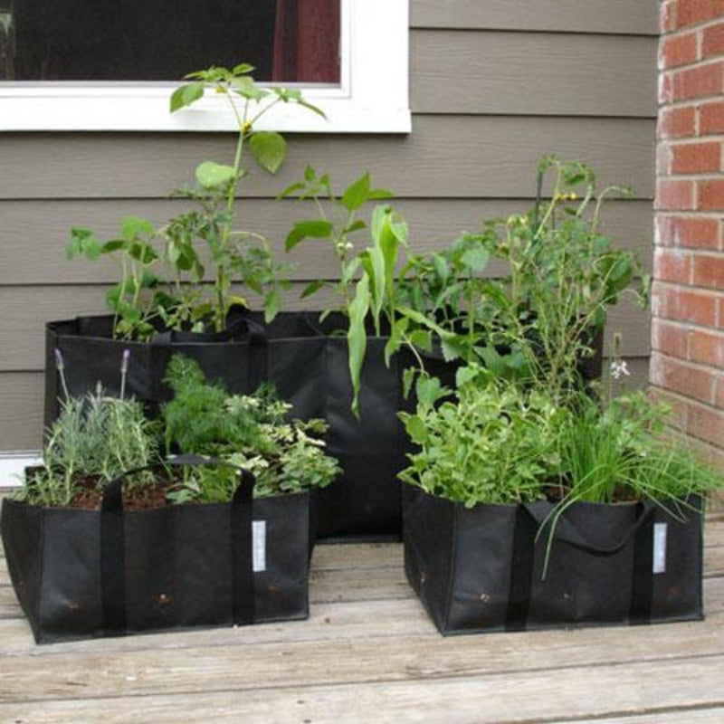 Home Garden Planting Bag for Herbs
