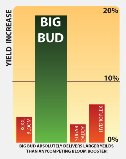 Advanced Nutrients Big Bud Liquid Fertilizer