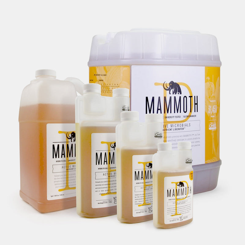 Mammoth P Microbes - Bloom Booster