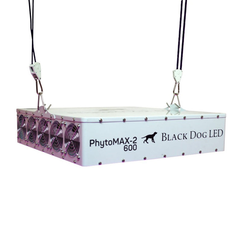 Phytomax-2-black-dog-led-600