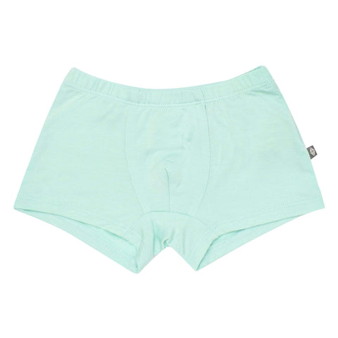 Kyte BABY Underwear Briefs in Sea Mist