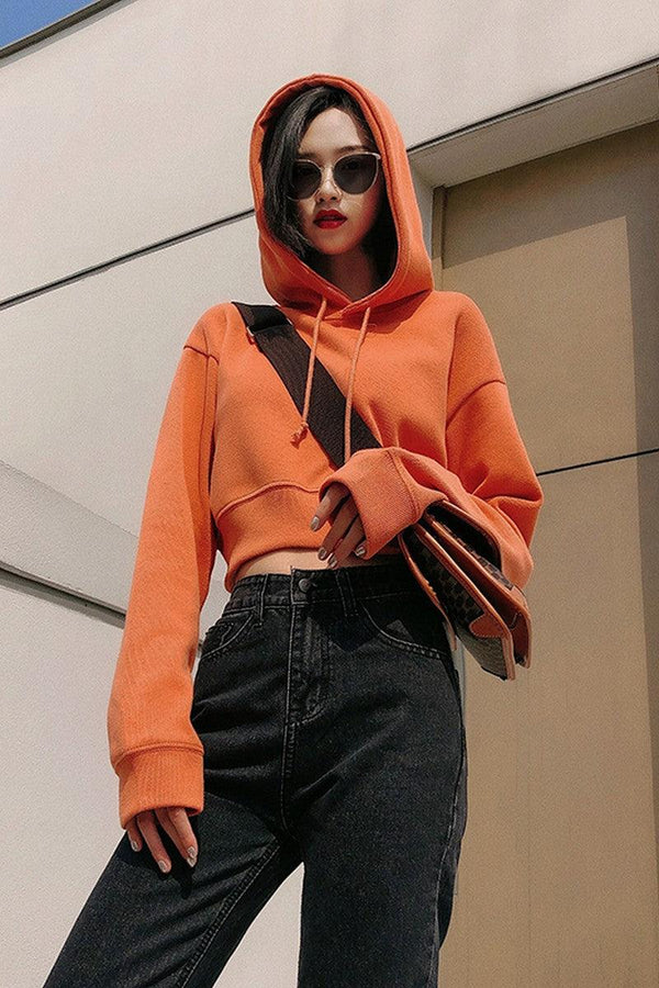 CZ Cropped Basic Hoodie