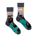 Bear and Salmon | Colourful Mismatched Funny Socks | King Stone