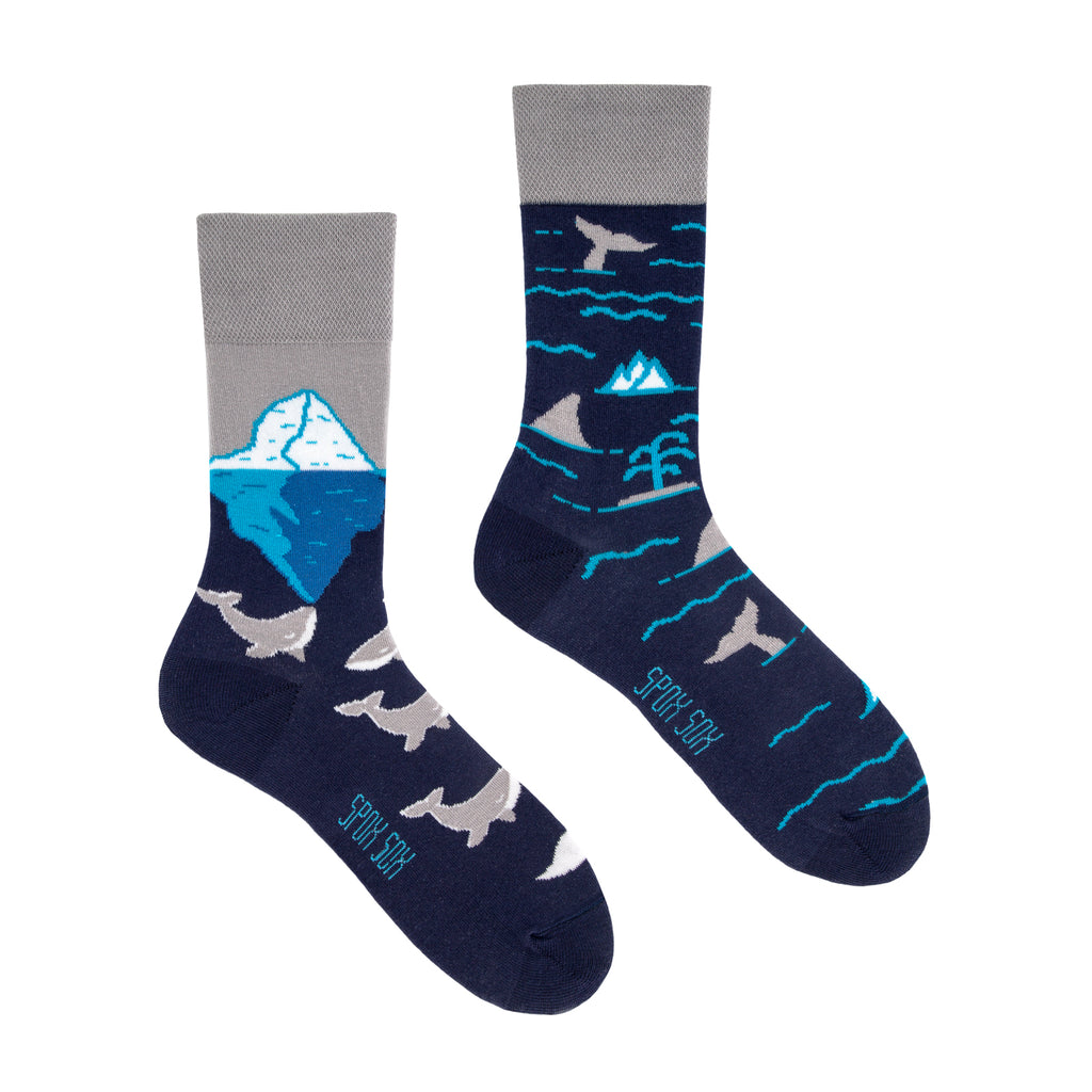 Arctic Whales | Colourful Mismatched Funny Socks | King Stone | Canada | SpoxSox | Spox Sox
