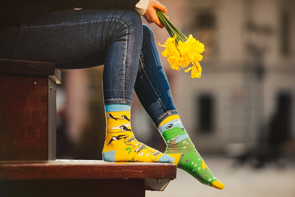 Swallow | Colourful Mismatched Funny Socks | King Stone | Canada