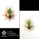 Wall Hanging Planter 08 - LIGHT RAZOR DESIGN STUDIO