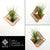 Wall Hanging Planter 05 - LIGHT RAZOR DESIGN STUDIO