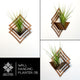 Wall Hanging Planter 06 - LIGHT RAZOR DESIGN STUDIO