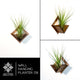 Wall Hanging Planter 09 - LIGHT RAZOR DESIGN STUDIO