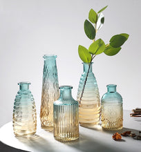 Load image into Gallery viewer, Ombré Glass Vase - Set of 5 - the-little-details-home-accents