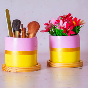 Pink & Yellow Concrete Planter