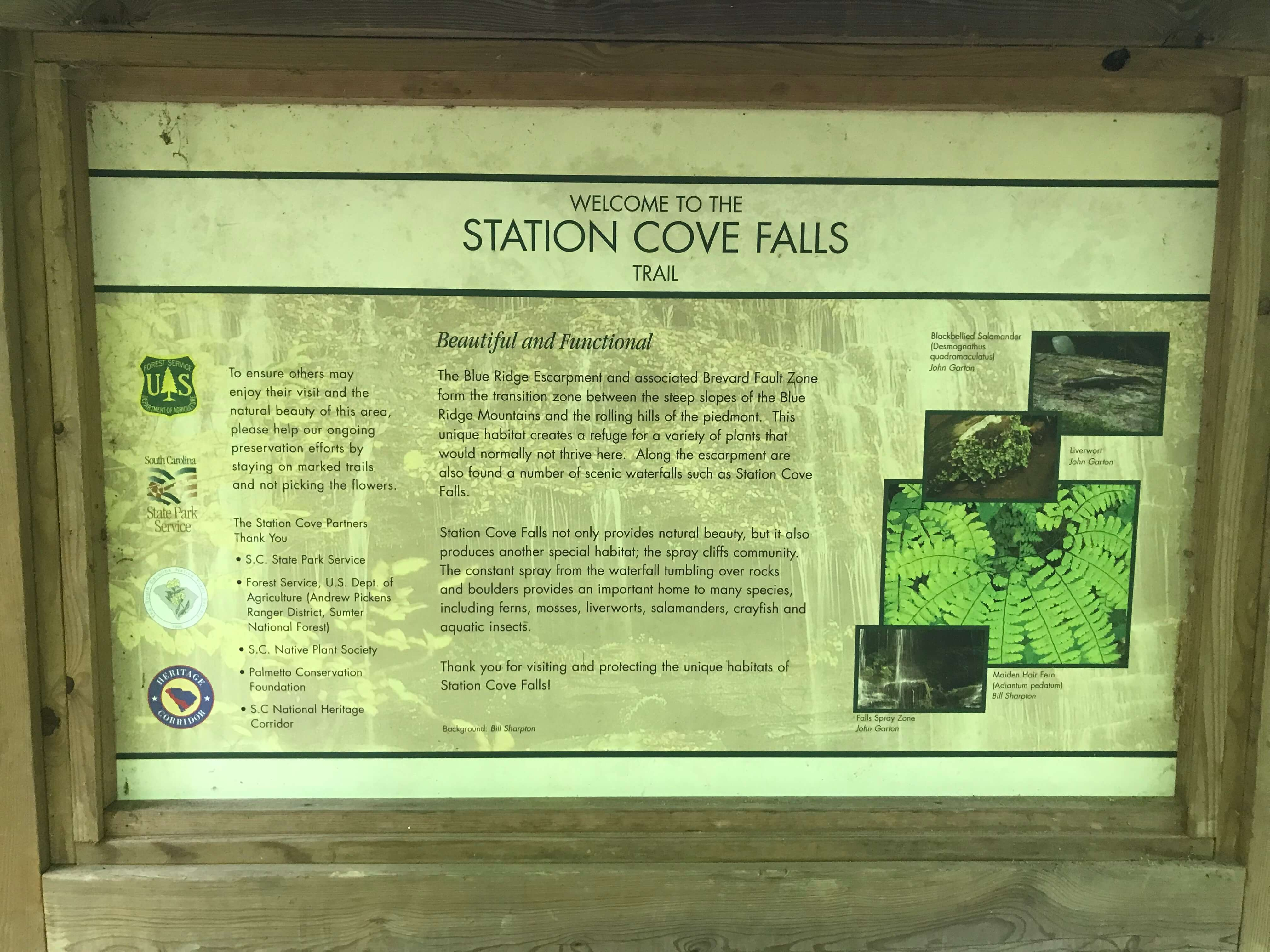 Station Cove Falls Trail Sign