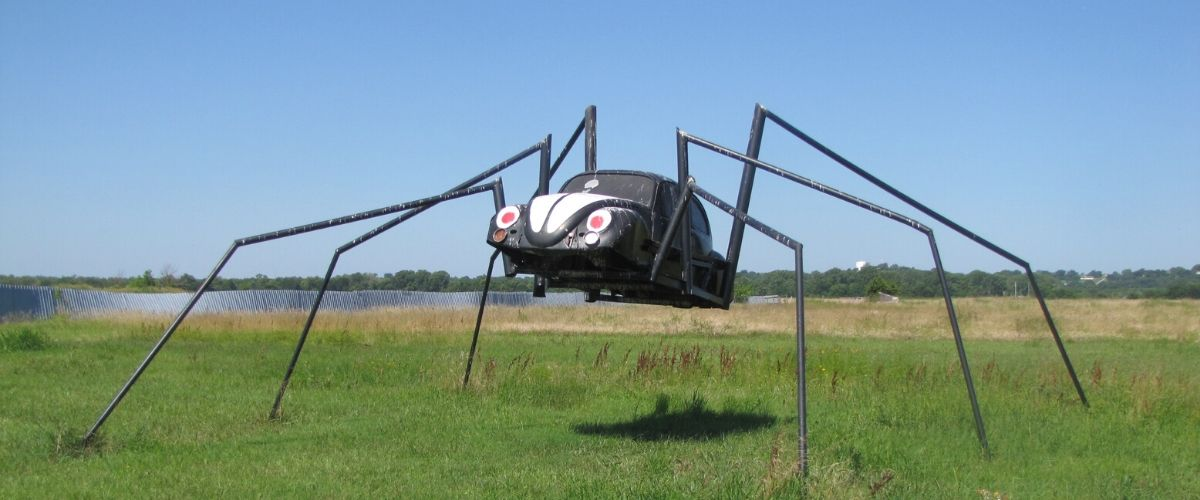 Spider VW Bug