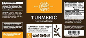 Global Healing Center Organic Turmeric with Black Pepper, 2 Fl oz